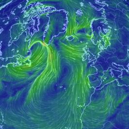 I venti in tempo reale